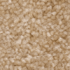 Beige Carpet
